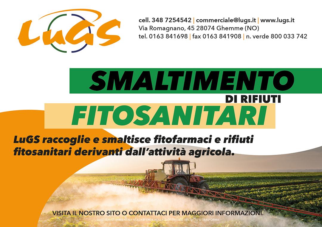 Fito_Web