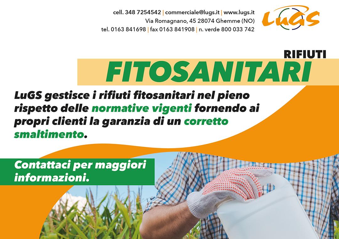 Fito_Web_retro